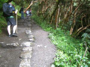 Inka Trail Bergnebelwald